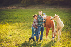 Happy family having fun with horses outdoors on green field on summer day Royalty Free Stock Photo
