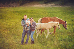 Happy family having fun with horses outdoors on green field on summer day Stock Photography