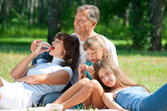 Happy family having picnic Royalty Free Stock Images