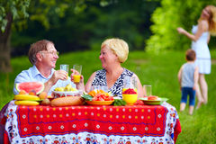 Happy family having picnic outdoors Royalty Free Stock Image