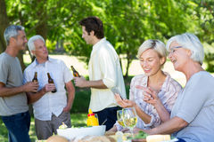 Happy family having picnic in the park Stock Photography