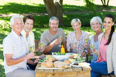 Happy family having picnic in the park Stock Image