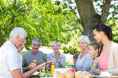 Happy family having picnic in the park Royalty Free Stock Images