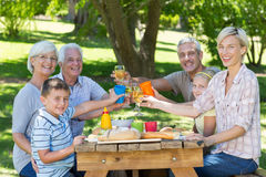 Happy family having picnic in the park Stock Images