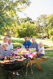 Happy family having picnic in the park Royalty Free Stock Photos