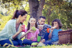 Happy family having a picnic in the park Royalty Free Stock Photos