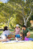 Happy family having picnic in the park. On a sunny day Royalty Free Stock Photography