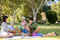 Happy family having picnic in the park. On a sunny day Royalty Free Stock Images