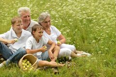 Happy family having a picnic Royalty Free Stock Photography