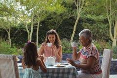 Happy family having tea Royalty Free Stock Photos