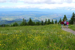 Happy family hiking day panoramic view Royalty Free Stock Images