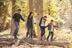 Happy family hold hands balancing on fallen tree in a forest Stock Photo