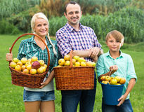 Happy family holding baskets with apples Stock Image