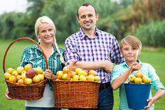 Happy family holding baskets with apples. Happy family with teenager holding baskets with apples outdoors Stock Photography