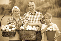 Happy family holding baskets with apples. Happy family with teenager holding baskets with apples outdoors Royalty Free Stock Photography