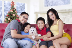 Happy family holding dog on sofa Royalty Free Stock Images