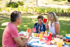 Happy family interacting with each other while having juice in park Royalty Free Stock Photography