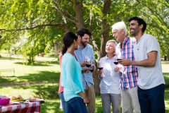 Happy family interacting while having red wine in park. On a sunny day Royalty Free Stock Photography