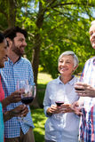 Happy family interacting while having red wine in park. On a sunny day Stock Photos