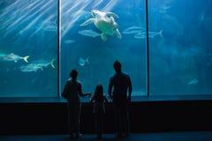 Happy family looking at fish tank. At the aquarium Royalty Free Stock Photography