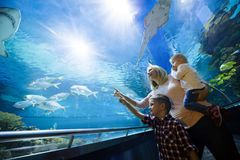 Happy family looking at fish tank at the aquarium stock images