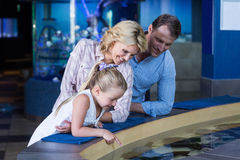 Happy family looking at manta ray Stock Photography