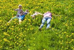 Happy family lying on the grass Royalty Free Stock Photography