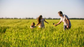 Happy Family Making Home Video In The Field stock footage