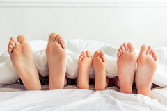 Happy family in the morning Stock Photo