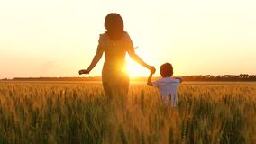 Happy family: mother and child running across the wheat field, holding hands. Silhouette of a woman and a child in the