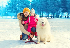 Happy family mother and child with white Samoyed dog walking in winter Stock Photos