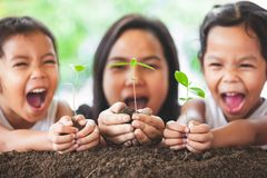 Happy family mother and daughter holding young tree stock photo