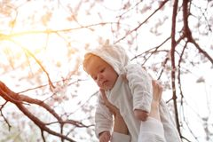Happy family. mother hands throws up child in the blooming apple trees, on sunny day in the park. Positive human emotions, feeling Stock Image
