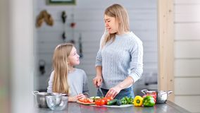 Happy family - mother and her daughter are preparing a dinner together. Happy family - mother and her daughter are preparing a healthy dinner together. They are stock video footage