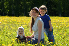 Happy family of mother and two sons. In dandelion field Royalty Free Stock Image