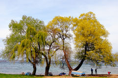 Happy family near the Ohrid Lake Royalty Free Stock Photos