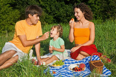 Happy Family Of Three On Picnic In Garden Royalty Free Stock Photography