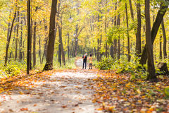 Happy family outdoor in autumn Stock Images