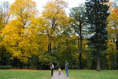 Happy family outdoors. Mother, father and baby on autumn walk in the park royalty free stock photos