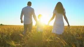 Happy family outdoors walking on wheat field with little boy. Mother, father, son child having fun on summer day