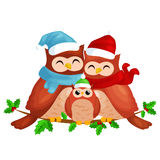 Happy family of owls mom dad and baby in a warm hat and scarf sitting on a branch and enjoys the eve of Christmas and Royalty Free Stock Images