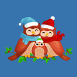 Happy family of owls mom dad and baby in a warm hat and scarf sitting on a branch and enjoys the eve of Christmas  Stock Photos