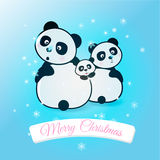 Happy family  pandas catch snowflake. Vector illustration. Royalty Free Stock Photography
