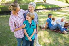 Happy family in the park Stock Image