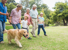 Happy family in the park with their dog. On a sunny day Stock Photos