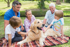 Happy family in the park with their dog. On a sunny day Stock Photography