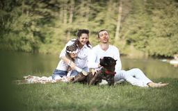 Happy family with pet dog at picnic in a Sunny summer day. pregn Stock Images