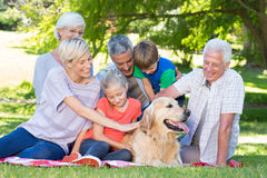 Happy family petting their dog in the park Royalty Free Stock Photography