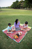 Happy family picnic Royalty Free Stock Photos