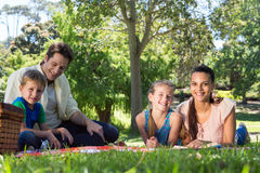Happy family on a picnic in the park Royalty Free Stock Image